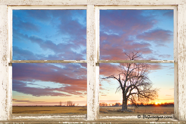 beautiful morning rustic white picture window frame view window view art