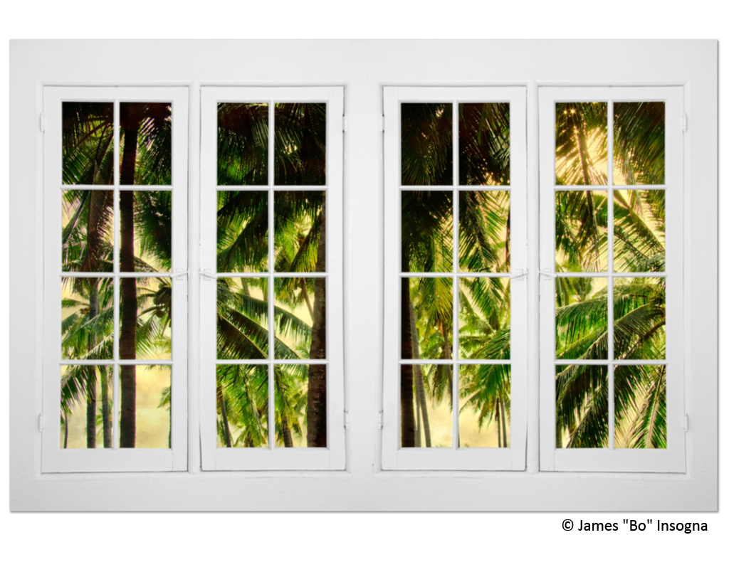 jungle plantation double 16 pane window view 32 x48